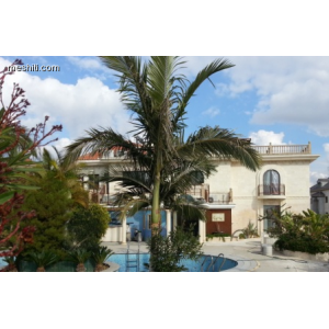 <a href='https://www.meshiti.com/view-property/en/1769_central_zone_a_below_motorway-up_makarios_ave.__-_germasogeia_upto_polemidia_house__villa_for_rent/'>View Property</a>