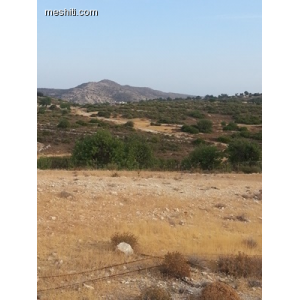 <a href='https://www.meshiti.com/view-property/en/2291_central-one__up_motorwayfrom_polemidia_to_germasogeia_land__plot_for_sale/'>View Property</a>