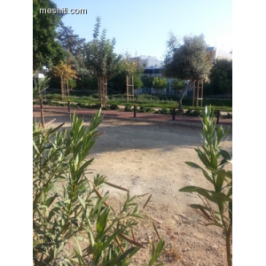 <a href='http://www.meshiti.com/view-property/en/2512_shopping_centre_below_makarios_ave._land__plot_for_sale/'>View Property</a>
