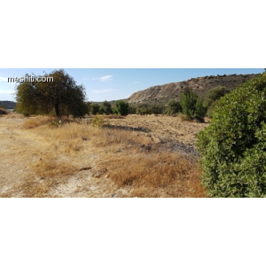 <a href='http://www.meshiti.com/view-property/en/2745_central_zone_below_motorway-up_makarios_ave.__-_germasogeia_upto_polemidia_land__plot_for_sale/'>View Property</a>