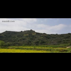 <a href='http://www.meshiti.com/view-property/el/2931__10_-_20________/'>Δείτε το ακίνητο</a>