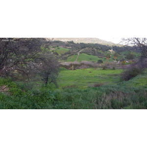 <a href='https://www.meshiti.com/view-property/en/3126_central-one__up_motorwayfrom_polemidia_to_germasogeia_land__plot_for_sale/'>View Property</a>