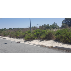 <a href='https://www.meshiti.com/view-property/en/3203_central-one__up_motorwayfrom_polemidia_to_germasogeia_land__plot_for_sale/'>View Property</a>