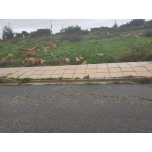 <a href='https://www.meshiti.com/view-property/en/3474_central-one__up_motorwayfrom_polemidia_to_germasogeia_land__plot_for_sale/'>View Property</a>