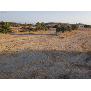 <a href='https://www.meshiti.com/view-property/en/3855_central_zone_a_below_motorway-up_makarios_ave.__-_germasogeia_upto_polemidia_land__plot_for_sale/'>View Property</a>