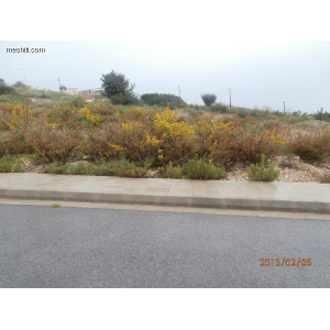 <a href='https://www.meshiti.com/view-property/en/1183_central-one__up_motorwayfrom_polemidia_to_germasogeia_land__plot_for_sale/'>View Property</a>